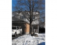Real Estate Listing  32B Woodford Ottawa